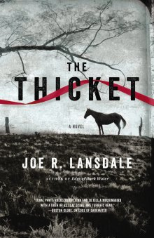 ansdale.thethicket