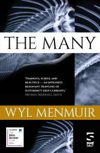 the-many-book-cover